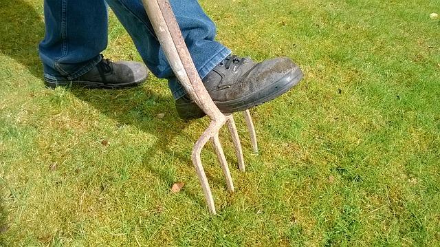 Rund um den rasen rasenpflege im garten pflege sorten - Drainage garten lehmboden ...